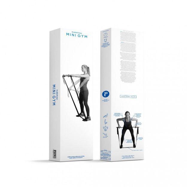 Picture of Swedish Posture Mini Gym